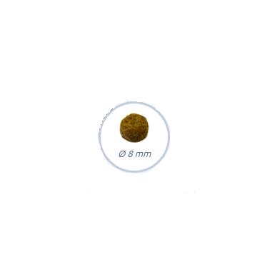 BOSCH Adult Mini Geflugel&Hirse (paukštiena ir soros) 2