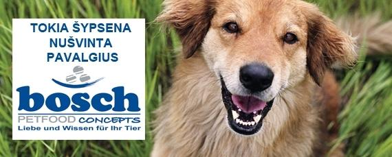 Bosch_šunims