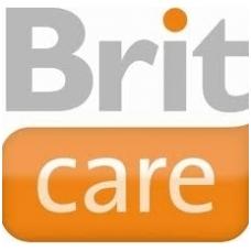 brit-care logo-1