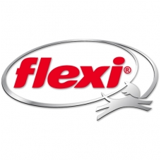 flexi logo large-1
