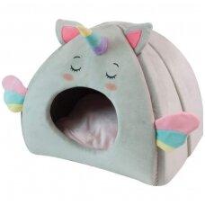 Guolis-namelis katei