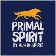 primal-spirit-logo-1