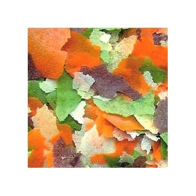 PRODAC Goldfish flakes 2